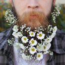 Muži s květinami - flower-beard6galerie6
