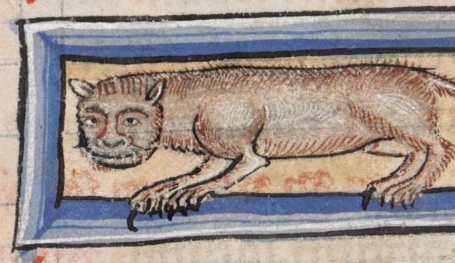 20 středověkých svědectví o divné povaze koček - ugly-cat015