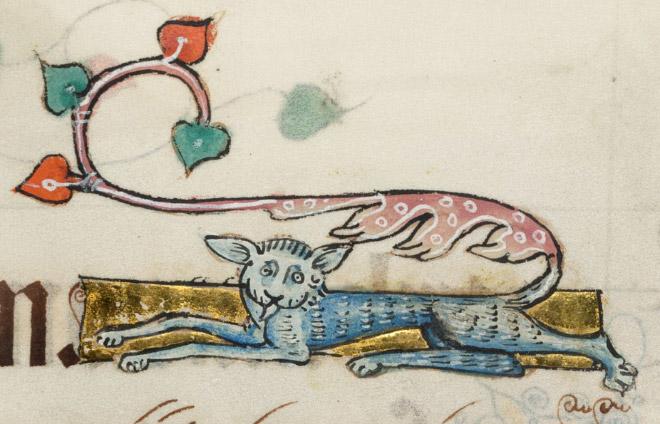 20 středověkých svědectví o divné povaze koček - ugly-cat02
