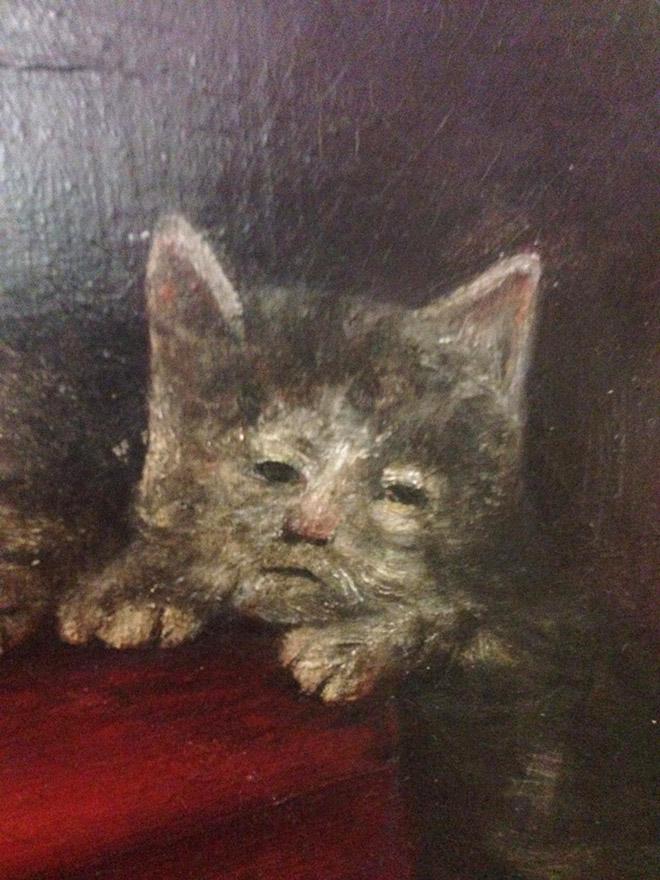 20 středověkých svědectví o divné povaze koček - ugly-cat1