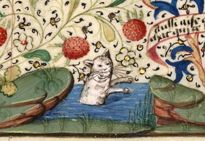 20 středověkých svědectví o divné povaze koček - ugly-cat11