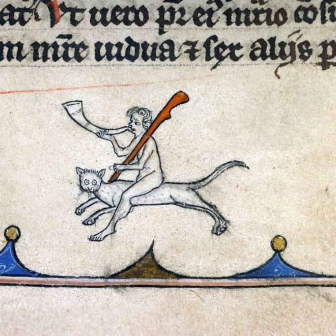 20 středověkých svědectví o divné povaze koček - ugly-cat13