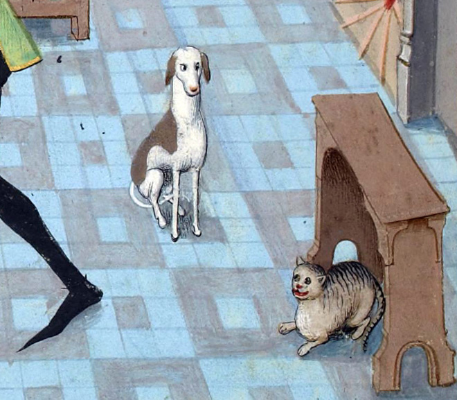 20 středověkých svědectví o divné povaze koček - ugly-cat17