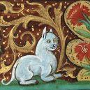 20 středověkých svědectví o divné povaze koček - ugly-cat19