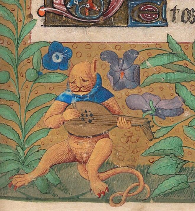 20 středověkých svědectví o divné povaze koček - ugly-cat5