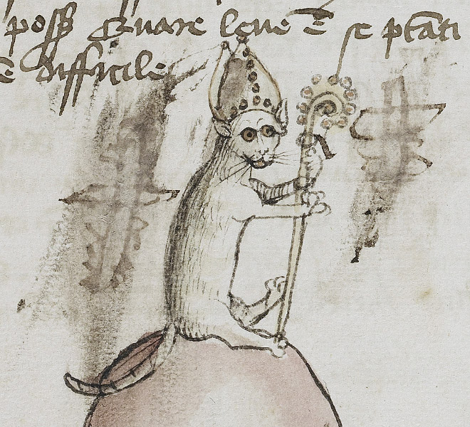 20 středověkých svědectví o divné povaze koček - ugly-cat9