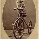 Nepřehlédněte retro fotografie těchto rozkošných šelmiček! - btnpointercat03