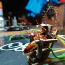 Poprava švába na elektrickém křesle - 06