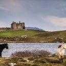 Grace O'Malley vládla drsnému irskému světu 16. století - bunowen_n