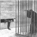 Yasuke nebyl jediným cizím samurajem: podívejte se do galerie evropských samurajů - collacheinprison