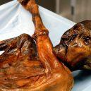 Vědci provedli analýzu Ötziho žaludku - faktanpaikka_1_0