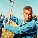 Nejlepší role Paula Newmana - Frajer Luke (1967)