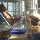 """Starověké """"solné mumie"""": pohleďte do tváře horníkům z dávných dob lidské civilizace - saltman-iran-12"""