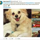 Mark Hamill a jeho momenty v Praze -