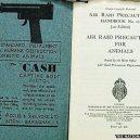 Britský masakr domácích zvířat během 2. světové války - _70435314_dscf5425