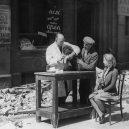 Britský masakr domácích zvířat během 2. světové války - gettyimages-3368017