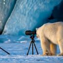 Nejvtipnější fotografie zvířat roku 2018 - snimek-obrazovky-2018-10-15-v-9-58-09