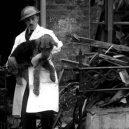 Britský masakr domácích zvířat během 2. světové války - war1-440244