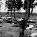 V genocidě Arménů zemřelo na 2 miliony lidí - bodies-on-ground-1