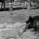V genocidě Arménů zemřelo na 2 miliony lidí - bodies-wrapped-up