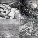 V genocidě Arménů zemřelo na 2 miliony lidí - bones-and-corpses