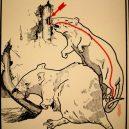 Elektřina a my. Bizarní způsoby, kterými vás mohl zabít elektrický proud - vintage-illustrations-ways-to-die-electrocution-4-5bf2694fda85e__700
