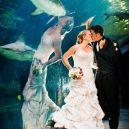 """Fotografie ze svatby, které byly pořízeny v ten """"správný"""" moment - 3"""
