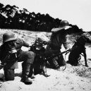 Zvířata a válka. 14 fotografií zachycující obvyklé i neobvyklé způsoby využití zvířat v armádě - gasmaks-dogs