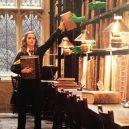 16 opravdu povedených snímků z natáčení Harryho Pottera. Takhle oblíbeného brýlatého kouzelníka a jeho přátele nejspíš neznáte - green-hands