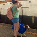 Nové nařízení komplikuje život newyorským pejskařům. Podívejte se, jak vtipně si s problémem poradili - nyc-subway-dog2