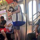 Nové nařízení komplikuje život newyorským pejskařům. Podívejte se, jak vtipně si s problémem poradili - nyc-subway-dog3