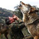 Španěl jako malé dítě utekl do hor za vlky. Žil s nimi až do svých 19 let - b7f7d808-641b-40d7-e4ef-186a86f2d60c