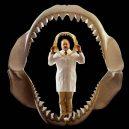 Největší žralok mohl dosahovat délky až 30 metrů! - clifford-greatwhite-meg-jaws