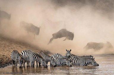 Výherní snímek soutěže The National Geographic Instagram Photography Contest od fotografa Ketana Khambhatty.