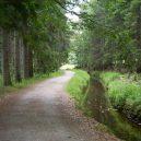 Inženýr Josef Rosenauer přišel v roce 1759 s geniálním plánem, jak zásobovat Vídeň dřevem přímo ze Šumavy - Typický-průběh-toku-wikipedia