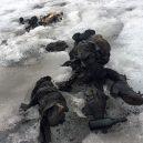 Tající ledovec odhalil těla manželů zmizelých roku 1942 - 4272FEE900000578-0-image-a-19_1500728225671