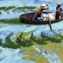 Peklo na zemi. Takhle vypadá život v znečištěné Číně - algae-lake-hefei-china