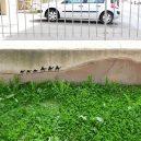 26 důkazů, že street art je mnohem více než jen tagy a graffity - creative-interactive-street-art-2