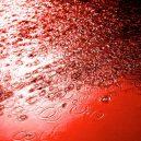 Z nebes padá krev – tenhle jev zažila Indie nedávno hned dvakrát - 7AD2329B-6F4F-41EB-B5CF-19493311E755