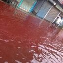 Z nebes padá krev – tenhle jev zažila Indie nedávno hned dvakrát - F2333D2D-E37D-47FC-85F6-F8BAF278FD1E