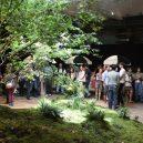Když nemůže být zeleň na zemi, bude v podzemí – podzemní park Lowline bude otevřen roku 2021 - c049e6046e931f3bfc52e656d2ba43d9_original