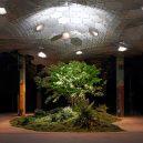 Když nemůže být zeleň na zemi, bude v podzemí – podzemní park Lowline bude otevřen roku 2021 - LowLine_50613_re_crop2