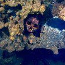 Atol Truk – největší podmořské pohřebiště válečných vraků - MD030051-e1433384461838
