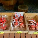 Nejstarší a nejmenší horký pramen v Japonsku – Tsuboju onsen - 102
