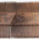 400 let potopený poklad jedné bohaté dámy zůstal perfektně zachován - Cow-horn-lice-comb