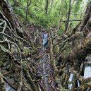 Pohádkové mosty z kořenů stromů jsou staré stovky let - 020615170139-living-root-bridge-4