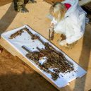 Charles-Étienne Gudin – ostatky Napoleonova oblíbeného generála byly po 200 let nezvěstné - a9f78d77edbaddd0d8628d521da5dc7cc71d9509
