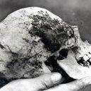 """Kdo byla zavražděná """"Bella""""? Žena v kmeni stromu zřejmě zůstane neidentifikovaná - bella-skull"""