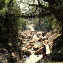 Pohádkové mosty z kořenů stromů jsou staré stovky let - IMG_3182