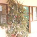 8 nejhnusnějších vánočních stromků na světě - pbh2
